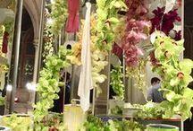 take a snapshot / Momentaufnahmen zum Thema Garten, Pflanzen und ein wenig mehr.