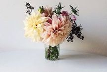 Bunches of Beauty