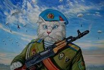 Cats-Russian of the Art / Cats / by Tatа