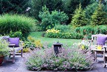 garden / actual rather than dream garden, planting ideas