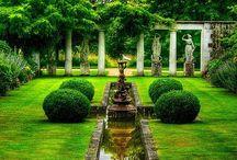 Exterior & Garden / Garden