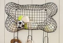 Cat Boy / Dog treats, play & spaces