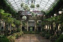WinterGarden & Orangerie