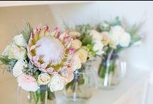 Pandora & Paul's Rustic Romantic / A rustic romantic styled wedding at Vrede en Lust Wine Estate