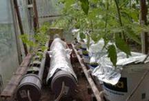 Selfsufficiency - Awkaponika / Tablica jest zbiorem wszelkich informacji o uprawach bezglebowych w tym przede wszystkim o akwaponice. Zajmuje się także hydroponiką oraz tradycyjnym ogrodnictwem.  Akwaponika, Aquacponics, Hydroponika, Hydroponics etc.