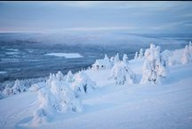 The Beaufy of Lapland