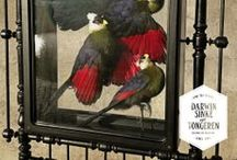 White-crested Turaco's / From the Collection: La vie dans l'Eden Flamboyantly designed by Dutch Artists Sinke & van Tongeren