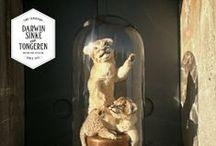 Lion Cubs / From the Collection: La vie dans l'Eden Flamboyantly designed by Dutch Artists Sinke & van Tongeren