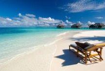 Maldive / La crociera subacquea alle Maldive è una delle vacanze più belle che si possano immaginare: sei in barca, in Paradiso, visto da un angolo diverso. Uno scialo per subacquei e non.
