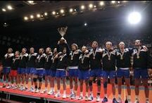 2011 - best ever for Serbian volleyball!
