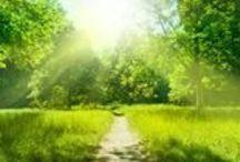 Lebensfreude / Glück macht gesund