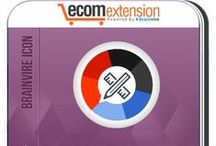 Brainvire Icon Extension for Magento