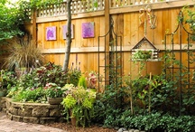 Outdoor Living / by Sharon Carlisle