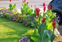 ο κήπος που θα ηθελα / Ιδέες για τον κήπο μου