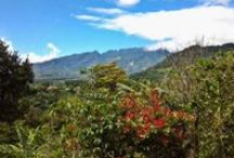 3 great lots for sale in Boquete, Panamá