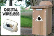 Our nest box & bird feeder camera systems