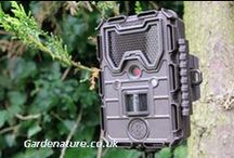 Motion detection camera / A range of high quality battery powered cameras designed specifically for capturing all the action, watching wildlife or time lapse filming.