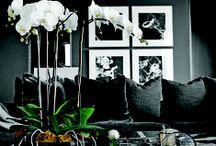 home # design / home # design