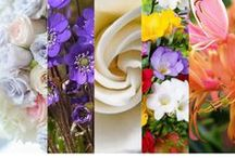Floral Fragrances – Women / All perfumes can be divided into families which are based on the overall impressions each fragrance generates. The Fragrance Family indicates the overall fragrance impression on which all the fragrance notes are structured.