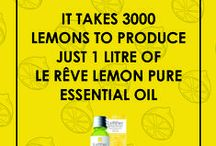 Le Reve Aromatherapy Facts / Interesting facts you need to know about aromatherapy and pure essential oils.