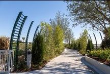 Orlando, Florida / Universal choose us to make this custom cable railing for their pedestrian garden bridge connecting the Cabana Bay Beach Resort to the main resort. This lushly landscaped bridge was designed to escort pedestrians almost without notice that they are crossing over a busy rd.