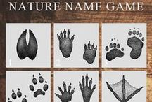 Nature Name Game! / Let's play an identification game! Can you guess the name of the living organisms in each of the numbered photos? Check back every month for a new game, and we'll play again!