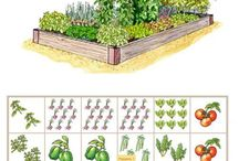 Garden Planning / Vegetable garden planning. Tips for seed starting & planting your garden. Use a garden planner & create a sowing schedule for crops.
