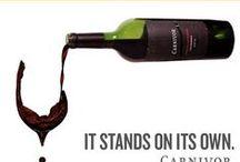 Wijnrecensies / Wat zeggen anderen over wijn? Je vind het hier...