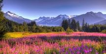 Alaska Someday!