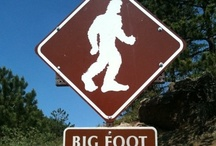 Bigfoot Posters, Signs, & Stickers