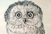 Owl Maniac