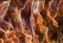textures structures patterns