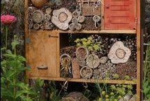 Ecogarden / Ideas for our new garden...