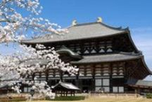 Japan / Planning a holiday? Tours, Travel and Activities in magical Japan