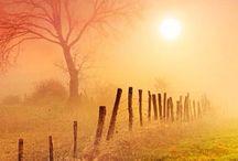Gyönyörű fotók / A csodák,amik körülöttünk vannak...