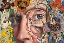 Anatomy plants collage