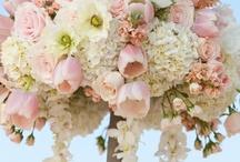 Weddings / by Linnor Penias