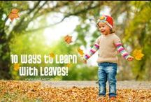 Fall in Love with Learning! / Seasonal learning for fall! Toys, activities, and lessons for home! / by Kaplan Toys