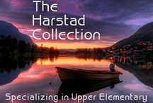 The Harstad Collection #22 / Exclusive Listings from The Harstad Products