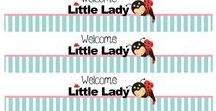 Little Lady Party Theme / Ladybug baby shower of party theme