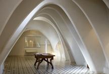 Antonio Gaudi / by Luiz Carlos Pedrosa