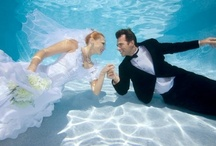 Destination Weddings in Mexico and the Caribbean / Event Divers provides empowering scuba diving trips to Mexico and the Caribbean for offsite corporate meetings, sales conferences, or destination weddings!
