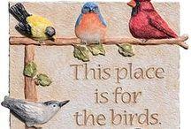✦☸✦ Birds ✦☸✦ / by ☪ᏕᏂÅz *⁀ღ