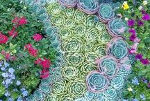 Crocs   For the Garden / Grow your garden in style.  Check out this board for great garden ideas and garden styles.