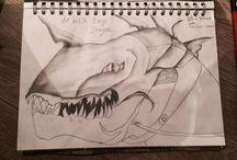 My sketch book (drawings) / my art work.