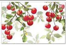 Fruits & Fruit Seed Packs