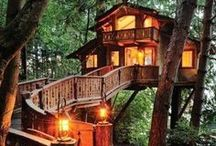 Tree Houses  / Bringing out the Peter Pan in all of us
