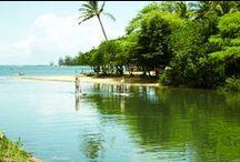 Anahulu River / ハレイワを流れる「アナフル川」では、パドルボードでのんびりと川上りを楽しむことができます。 サーフィンとは一味違うアクティビティにトライしてみませんか?