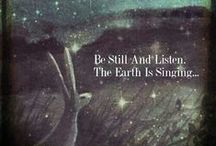 Shamanic Wisdom / Wisdom from the natural world....
