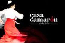 Carteles Casa Camarón / Carteles de las actuaciones que han pasado por Casa Camarón